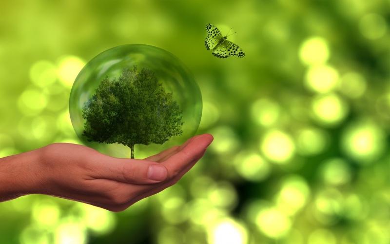 אם אתם אוהבים לטייל, כך תדאגו לאפס פסולת   אקולוגיה